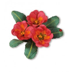 (659263)Sizzix Thinlits Die Set 10PK - Flower, Primrose