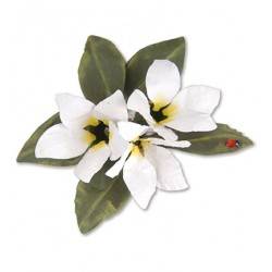 (659264)Sizzix Thinlits Die Set 8PK - Flower, Stephanotis