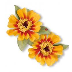 (659265)Sizzix Thinlits Die Set 7PK - Flower, Zinnia