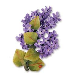 (659253)Sizzix Thinlits Die Set 5PK - Flower, Lilac