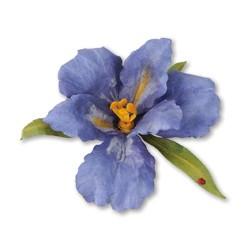 (659256)Sizzix Thinlits Die Set 10PK - Flower, Bearded Iris