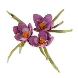 (659258)Sizzix Thinlits Die Set 13PK - Flower, Crocus