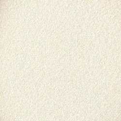 Embossing powder : silver pearl PEARLS