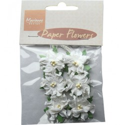 (RB2226)Paper Flowers White