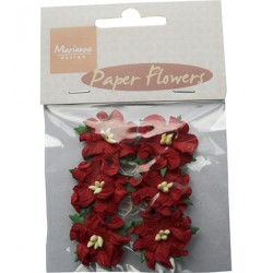 (RB2227)Paper Flowers Red