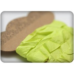 (SCB510116)ScrapBerry's Shabby Ribbon Lime 10 mm 1 m