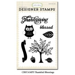 (CBStamp3)Carta Bella Clear Stamp Autumn Thankful Blessing 4x6 I