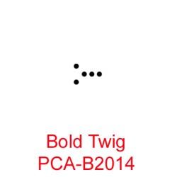 (PCA-B2014)Bold Twig