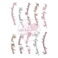 (CL455)stamp A7 set Vivianna greetings