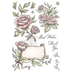 (AS004)Wild Rose Studio`s A5 stamp set Antique Roses