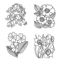 (STA-FL-10338-A6)Claritystamp clear stamp Flower Boxes