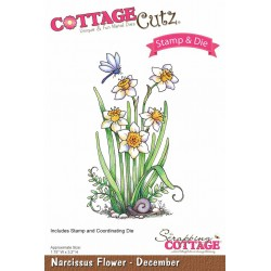 (CCS-010)Scrapping Cottage Narcissus Flower - December +stamp clear