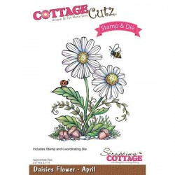(CCS-005)Scrapping Cottage Daisies Flower - April +stamp clear