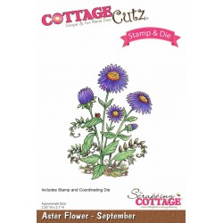 (CCS-001)Scrapping Cottage Aster Flower - September +stamp clear