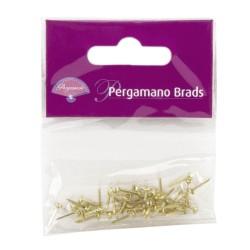 (PER-AC-70274-XX)PERGAMANO BRADS GOLD