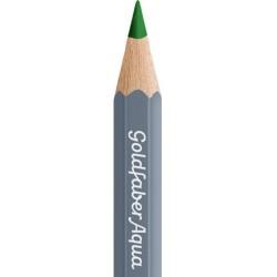 (114666)Faber Castell Goldfaber aqua 166 Grass Green