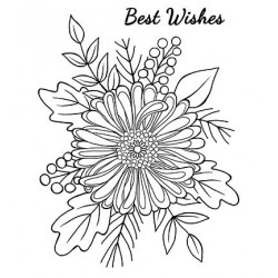 (JGS558)Woodware Clear Stamp Set Bold Blooms - Tracey
