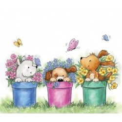 (CL515)Wild Rose Studio`s A7 stamp set Dogs in Pots