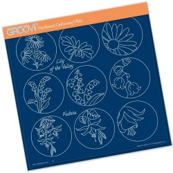 (GRO-FL-40914-15)Groovi Plate A4 LINDA WILLIAMS 123 FLOWER SAMPLER - DAISY