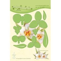 (45.4698)Lea'bilitie mal Multi die flower 012 Orchidee
