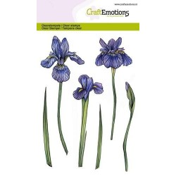 (1285)CraftEmotions clearstamps A6 - flower Iris