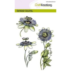 (1286)CraftEmotions clearstamps A6 - passion flower