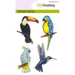 (1291)CraftEmotions clearstamps A6 - tropical birds