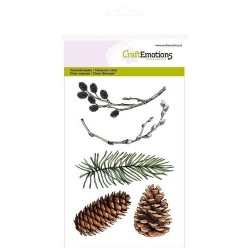 (1295)CraftEmotions clearstamps A6 - pine branch, willow catkins