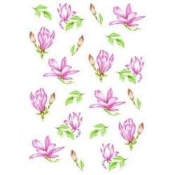 Pergamano vellum magnolia
