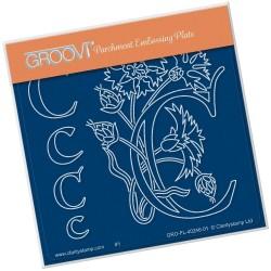 (GRO-FL-40246-01)Groovi® Baby plate A6 BARBARA'S FLORAL ALPHABET - C