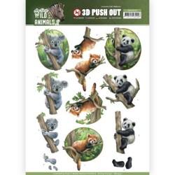 (SB10350)3D Pushout - Amy Design - Wild Animals 2 - Bears