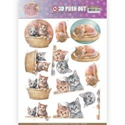 (SB10380)3D Pushout - Amy Design - Cats World - Kittens