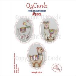 Q4Cardz Prints – Alpaca Aquarelpapier