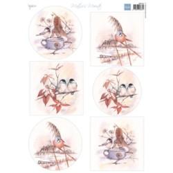 (MB0181)3D Mattie's Mooiste Winter birds