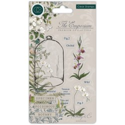 (CCSTMP020)Craft Consortium The Emporium Botany Clear Stamps