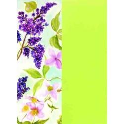 Pergamano Vellum packs spring blossom / grass green