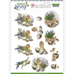 (SB10434)3D Pushout - Amy Design - Botanical Spring - Happy Ducks