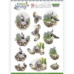 (SB10436)3D Pushout - Amy Design - Botanical Spring - Lapwing