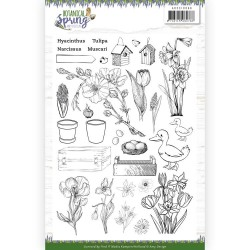 (ADCS10066)Clear Stamps - Amy Design - Botanical Spring