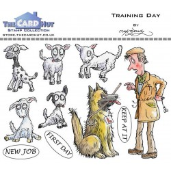 (MBWWTD)The Card Hut Training Day Clear Stamps