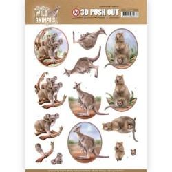 (SB10442)3D Pushout - Amy Design - Wild Animals Outback - Kangaroo