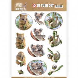 (SB10444)3D Pushout - Amy Design - Wild Animals Outback - Koala