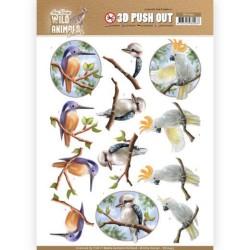 (SB10445)3D Pushout - Amy Design - Wild Animals Outback - Parrot