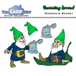 (GAGS)The Card Hut Garden's Secret Clear Stamps