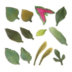 (658413)Thinlits Die Set 13PK -Leaves, Garden