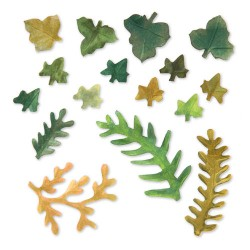 (658412)Thinlits Die Set 12PK -Leaves, Fern & Ivy