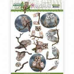 (SB10486)3D Push Out - Amy Design - Amazing Owls - Night Owls