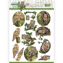 (SB10487)3D Push Out - Amy Design - Amazing Owls - forest Owls