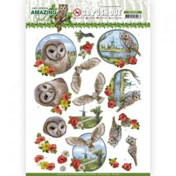 (SB10488)3D Push Out - Amy Design - Amazing Owls - Meadow Owls