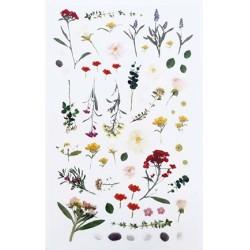 (740019-15)Stafil mini stickers Flowers & pearls pink